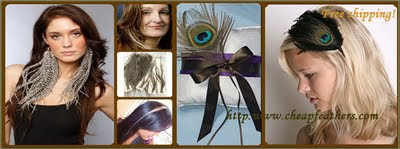 Cheap Feather Extensions
