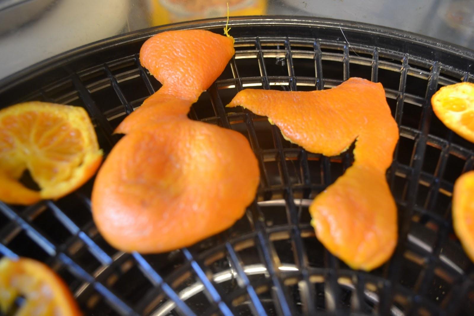 Kết quả hình ảnh cho dehydrator peel orange