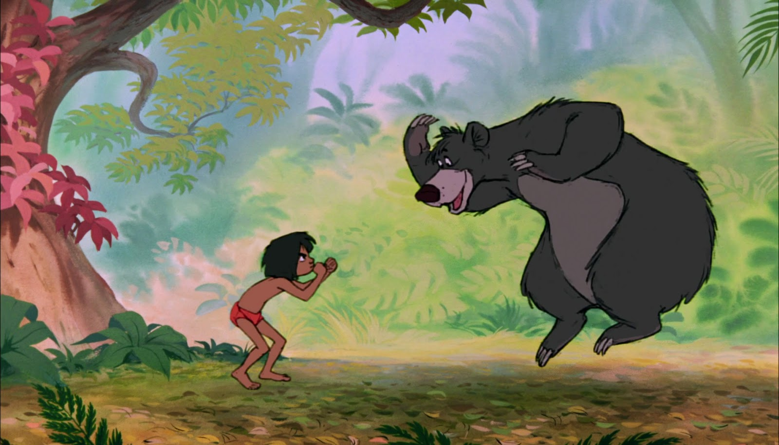jungle book meet baloo the bear