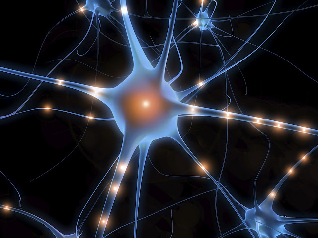 mente-quântica