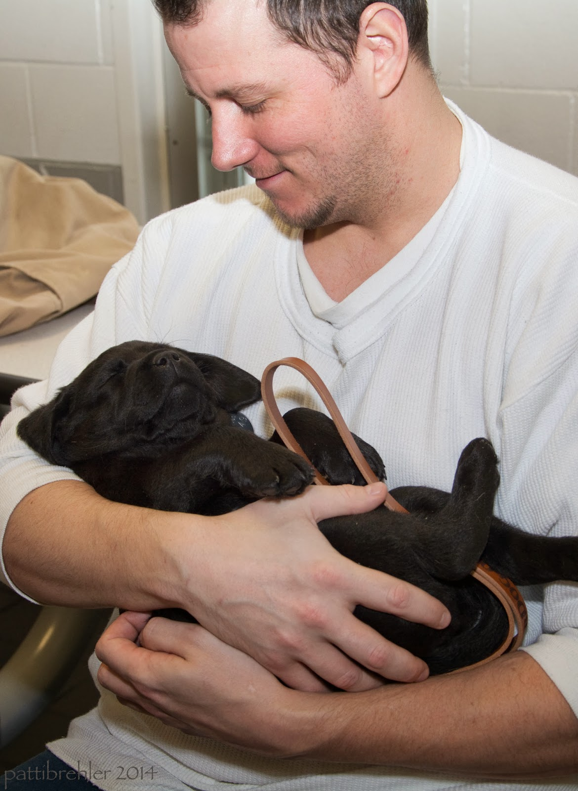 A man dressed in a white t-shirt is holding a small black Lab puppy like a baby in his arms. The puppy is sleeping and the man is looking down at it with a smile.