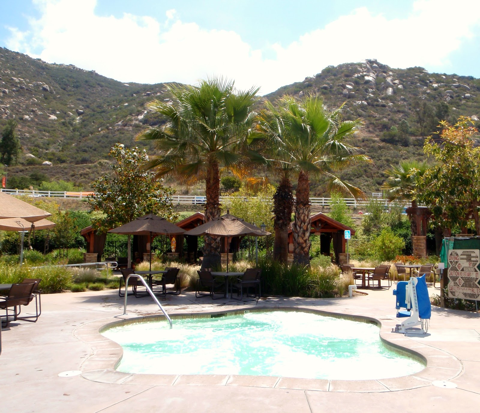 the obligatory blog: the welk resort is my cup of dish