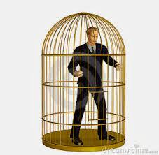 Losers VII. Livre como um passaro numa gaiola