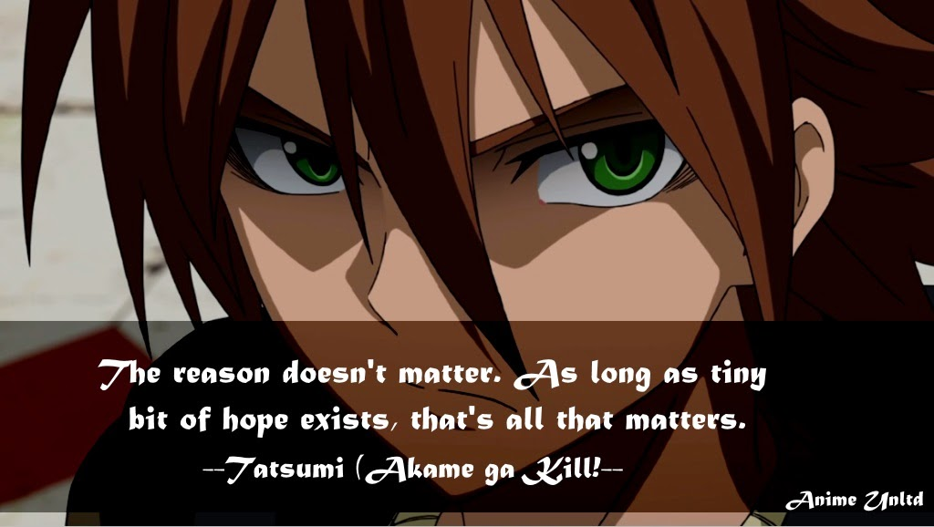 My Anime Review Akame Ga Kill Quotes