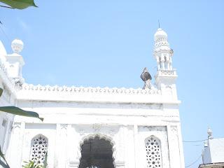 haji ali dargah, banned, women