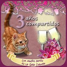 Feliz 3er cumple blog de la gata coqueta!!