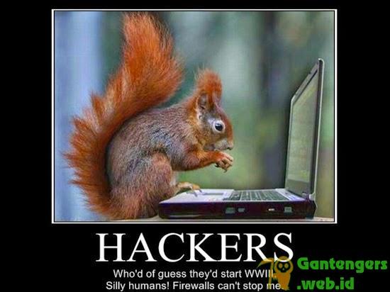 Belajar Menjadi Hacker Untuk Pemula