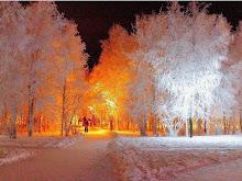 Vinter i vitt