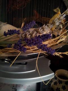 Die ersten Lavendelbüschlein vermehren sich im heimischen Garten. Ich konnte kaum abwarten und habe soeben frische Lavendelstängel geerntet und in meine Küchendeko integriert :) Der Lavendel aus dem letzten Jahr sieht reichlich blass aus - da kommt ihm eine Farbauffrischung wie diese gerade recht... Ich wünsche Euch ein sonniges Wochenende. Herzlichst, Lilly