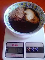 suziane burguez proença gastroplastia dieta pastosa obesidade