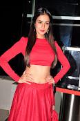 Sonal Chauhan Sizzling at Size Zero Premier-thumbnail-11