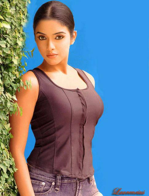 Foto-Asin-Thottumkal-Arttis-Seksi-Bollywood_6