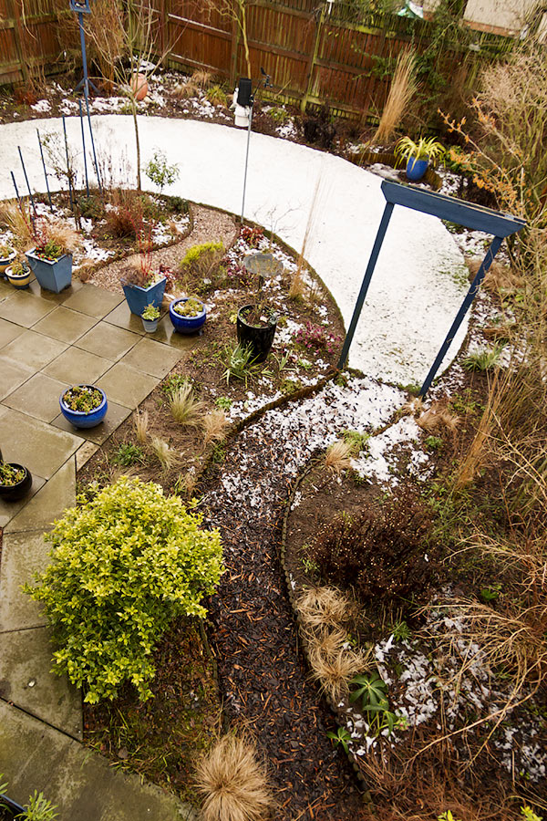 Perthshire winter garden in February