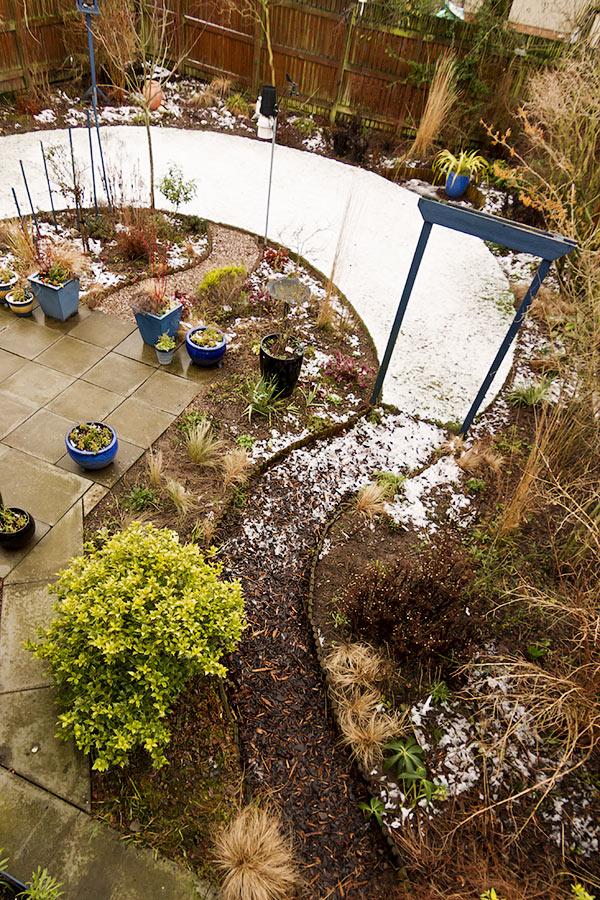 Perthshire winter garden in February