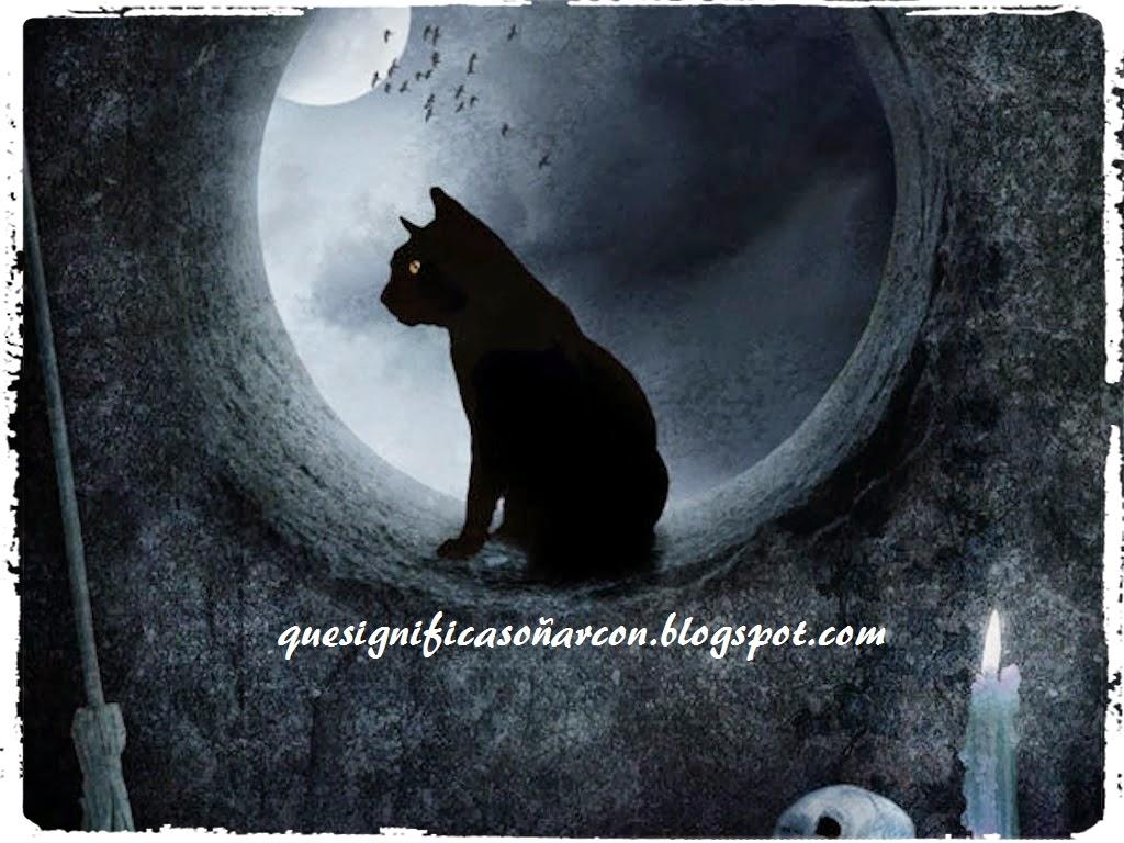 cual es el significado de soñar con felinos, gatos grandes y pequeños