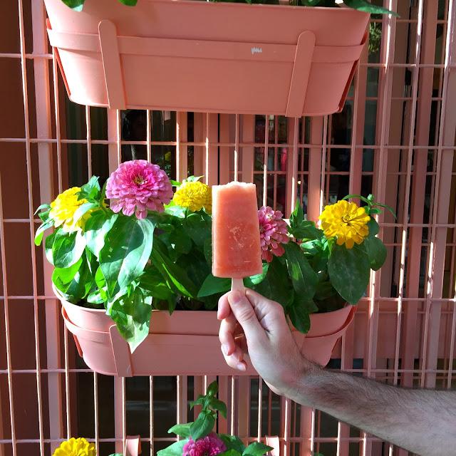 lolo polos artesanos espiritu santo 16 madrid malasaña estamostendenciados helados verano polos hot color