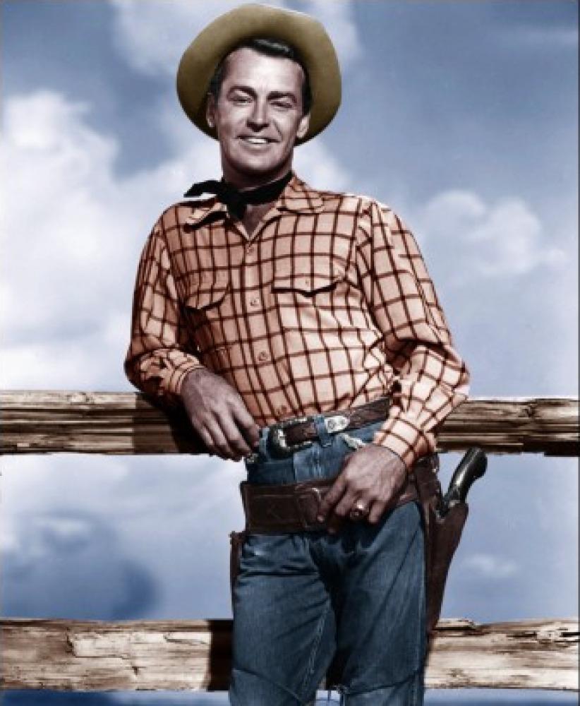 alan ladd western