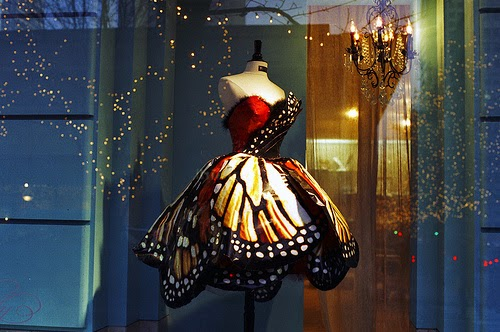 gemini scorpio butterfly
