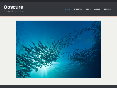 Obscura | Photography Theme