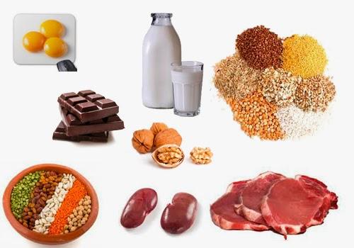 enzima origen animal: