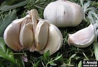 Bawang Putih Tak Berdampak Pada Penyakit Jantung