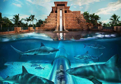 The Mayan Temple Water Slide