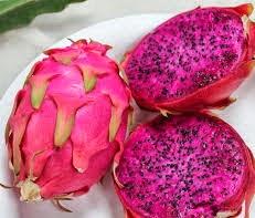 buah naga mengobati hipertensi