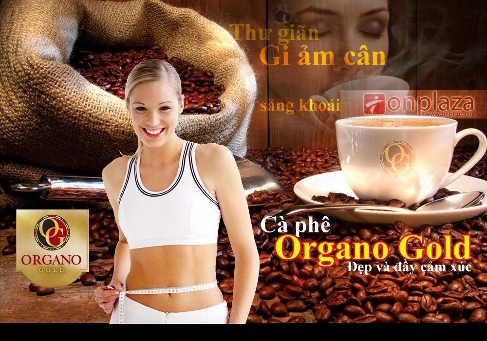 Thực phẩm chức năng Gourmet Cafe Latte coffee Organo Gold cafe giảm cân cao cấp