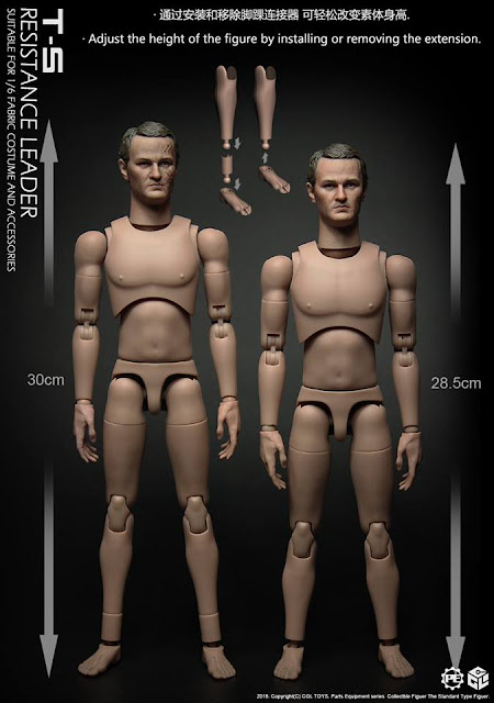 TC12-01 1//6th Scale Action Figure Male Head Sculpt