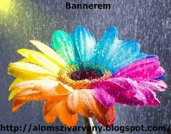Bannerem