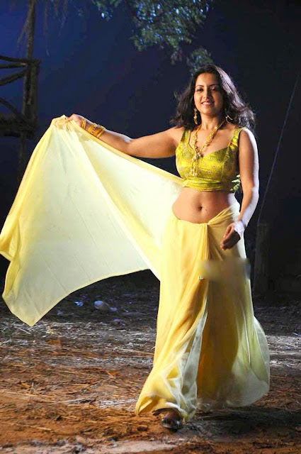 Hot Aunties Navel Stills Aishvarya Devan Spicy