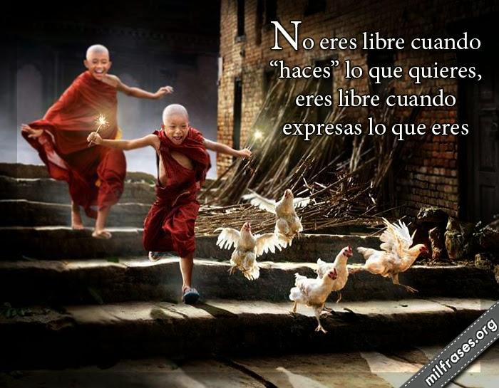 """frases de libertad y expresión, No eres libre cuando """"haces"""" lo que quieres, eres libre cuando expresas lo que eres."""