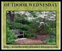 Outdoor Wednesdays