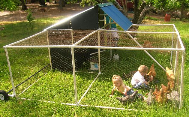 Best pvc pipe ideas for outdoor living and gardening for Pvc chicken house
