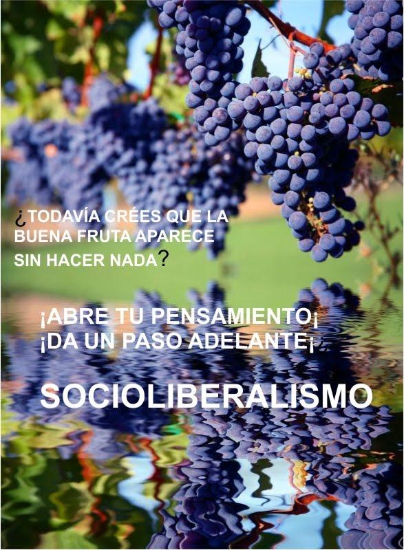Socioliberalismo: avanzando hacia el futuro.