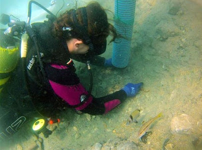 Ancient shipwrecks found off Turkish coast
