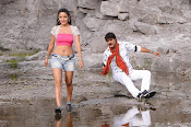 Dhee Ante Dhee movie photos-thumbnail-9