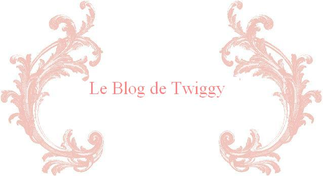 Le blog de Twiggy
