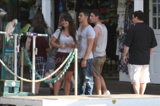 Jonas Brothers: Candids&Noticias > 5 Nick-joe-hawaii-005