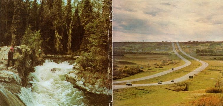 Prairie to Pine
