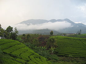 Objek wisata gunung talang di kabupaten solok sumatera barat