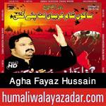 http://www.humaliwalayazadar.com/2015/10/agha-fayaz-hussain-nohay-2016.html