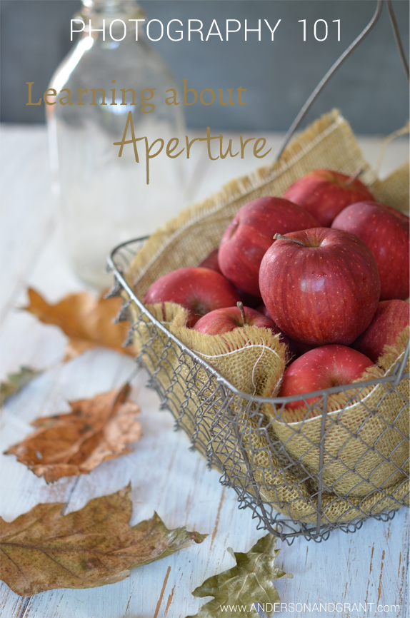 Check out these tips on Photography 101....Learning about Aperture | www.andersonandgrant.com