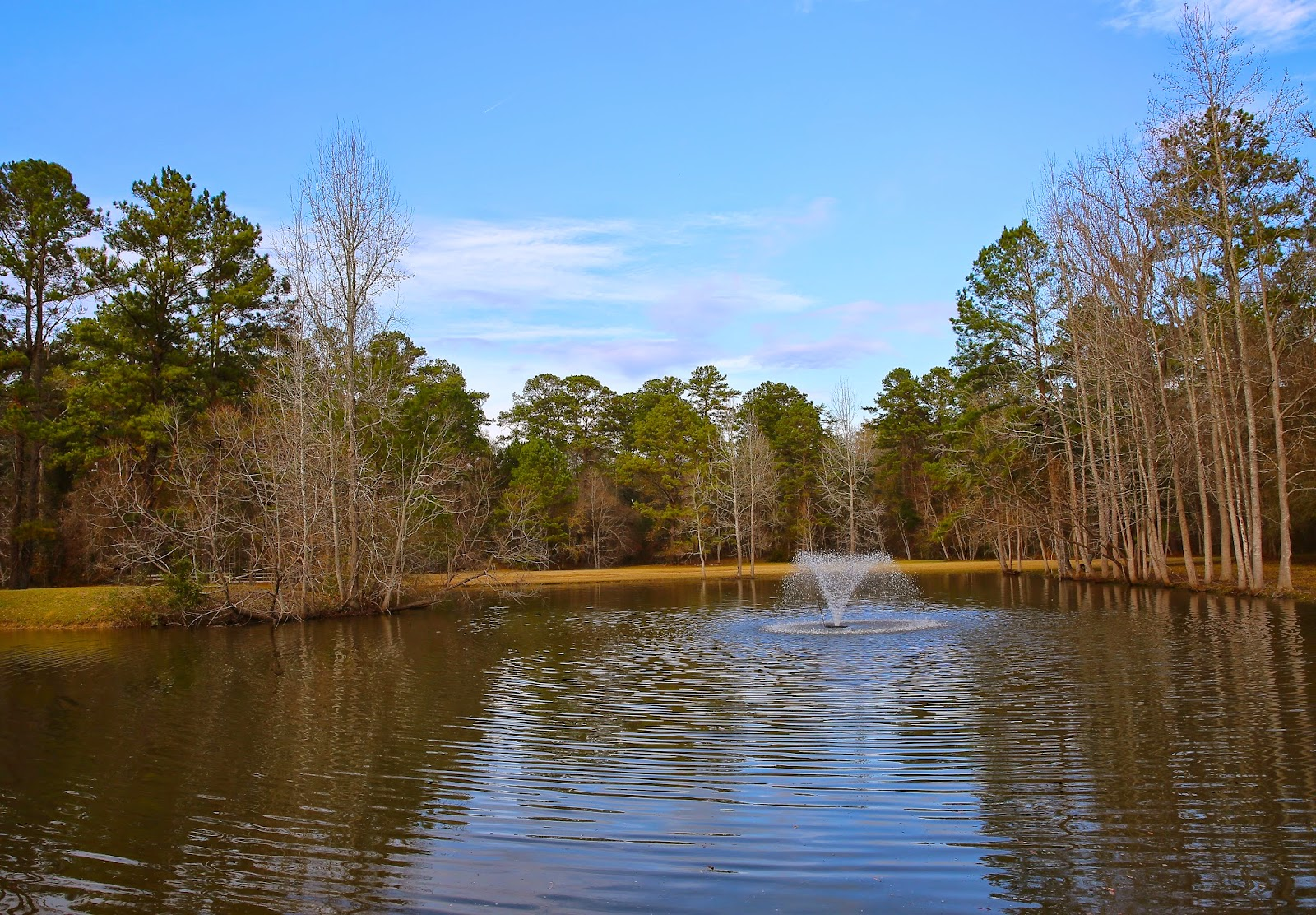 Sweet southern days restocking the fish pond for Georgia fish farms