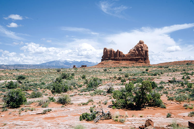 Utah Mighty 5 _arches national park