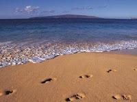 ,Deniz Kumu Faydalımıdır,Plaj Kumu Faydalımıdır