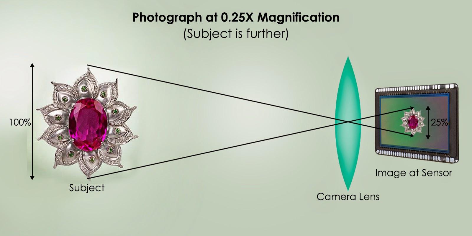 Photograph at .25x magnification