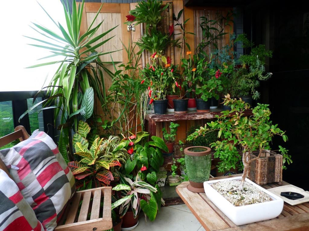 Lamo construtora saiba decor crie uma rea verde for Como criar caracoles de jardin