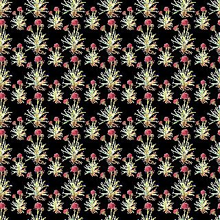 stock wildflower background digital