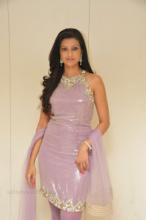 Hasha Nandini pos at cmr aashadam event 014.jpg